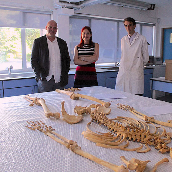 University of Winchester experts help uncover the history of Norman Winchester for TV show
