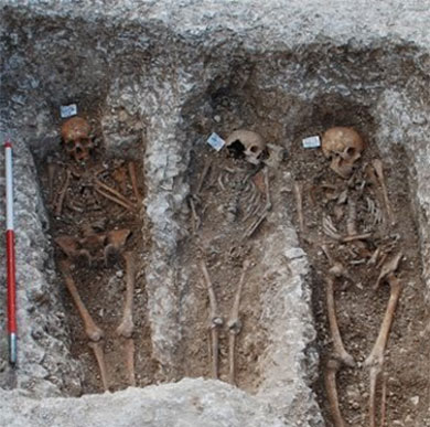 Archaeology research: skeletons of medieval lepers in situ