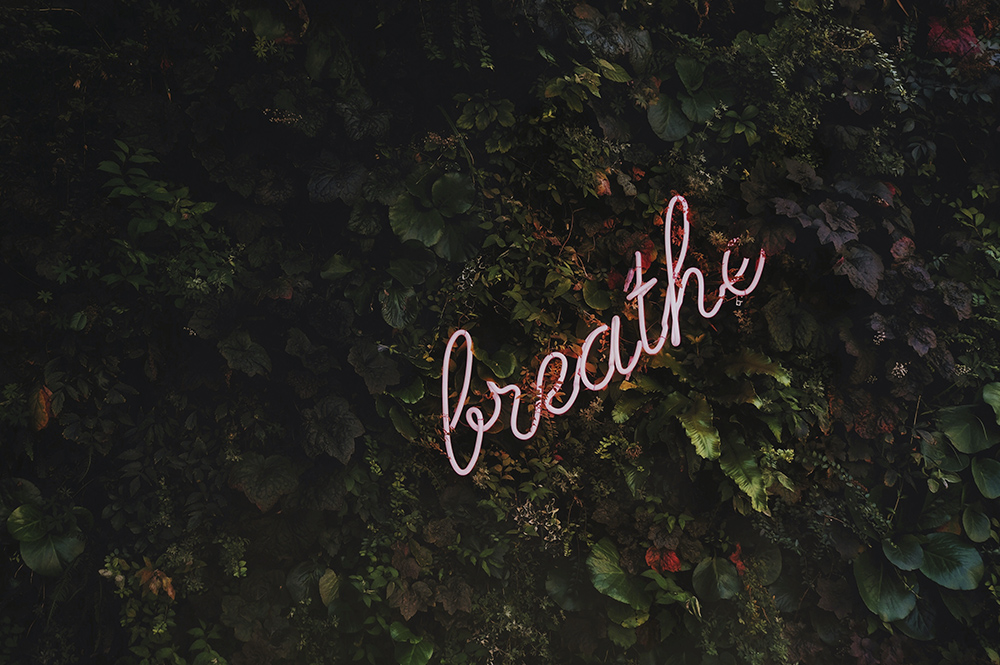 Neon light in shrubbery saying 'Breathe'