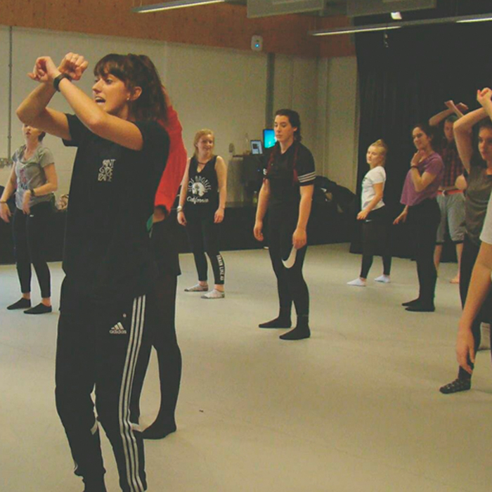 A week of workshops run by internationally-recognised dance companies